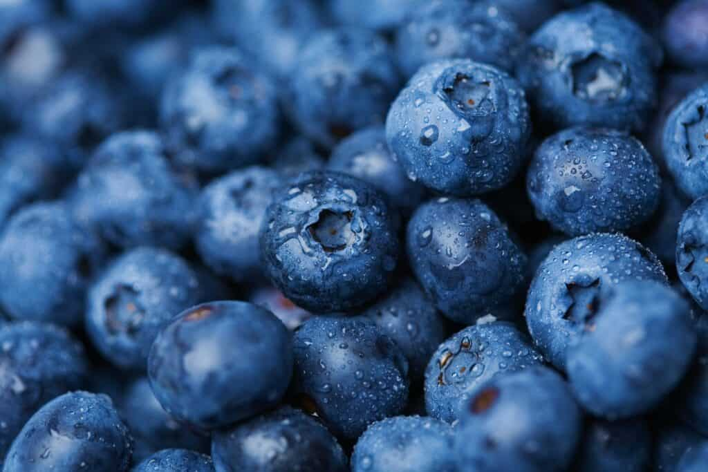 close up of blueberries which are an energy boosting food